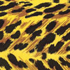 Animal Print of Black and Yellow Cello Roll 24 x 50