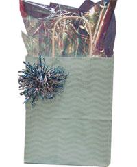 Aqua Bag Package