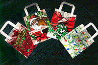 8 x 10 Frosted Holiday Gift Bags