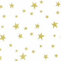 Gold Star Cellophane Roll 30 x 100