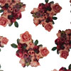 Gypsy Roses Cellophane Roll 24 x 100