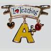 I love teaching pin
