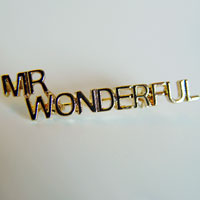 gold tone mr wonderful pin