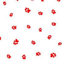 pet paws cellophane