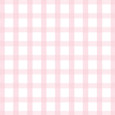 Pink Gingham 3 x 7.5 inch Cellophane Bags