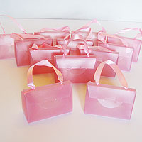 Pink plastic purse
