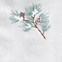 Snowy Pine Branch Cello Roll 24 x 50