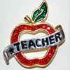 Star Teacher Pin