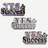 Pin YES to Success
