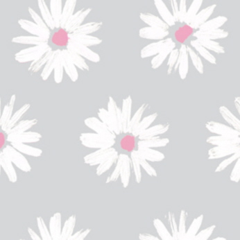 Daisies White and Pink